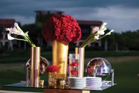 Lola & Taron Wedding Album - Image 6