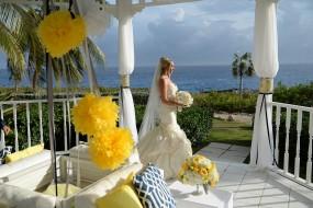 Krissy & Kyle Wedding Album - Image 19